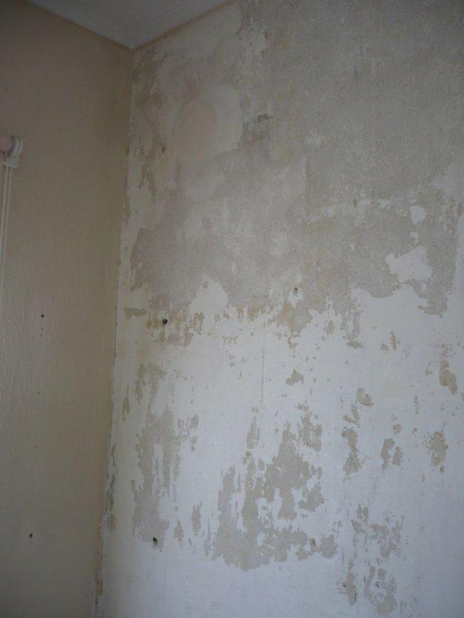 walls002.jpg